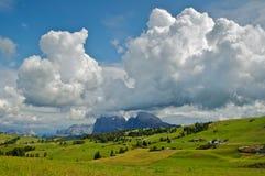 Dolomites, Seiser Alm - Italy. Seiser Alm, view on the Sassolungo - Dolomites, Italy royalty free stock images