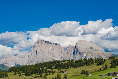 Dolomites Seiser Alm, Italy Stock Images