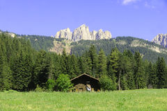 Dolomites Unesco. Summer portrait of Italian Dolomites in val di Fassa South Tyrol Alps Italy stock photos