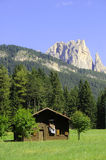 Dolomites Unesco. Summer portrait of Italian Dolomites in val di Fassa South Tyrol Alps Italy royalty free stock images