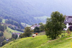 Dolomitgebirgslandschaft Stockfotografie