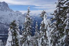 Dolomiti阿尔卑斯意大利 免版税库存照片