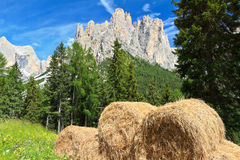 Dolomiti - alpine pasture Royalty Free Stock Photos