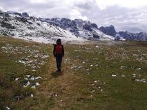 Dolomiti Brenta Стоковое Изображение