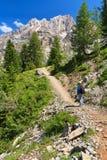 Dolomiti - caminante en el valle de Contrin Foto de archivo libre de regalías
