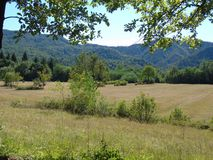 Dolomiti del Brenta en été Photographie stock libre de droits