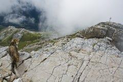 Dolomiti en Italia Foto de archivo libre de regalías