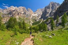 Dolomiti -landscape in Contrin Stock Photos