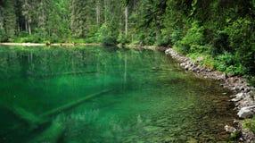 Dolomiti mountain green lake and tree trunks Royalty Free Stock Photos