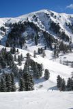 Dolomiti mountain, trentino, italy. Dolomiti mountains of Italy in wintertime Royalty Free Stock Photos