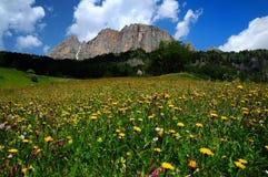 Dolomiti Passo Gardena Royalty Free Stock Images