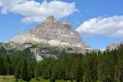 Dolomiti - Tre Cime di Lavaredo 库存照片