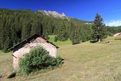 Dolomiti - vista em Val di Fassa fotografia de stock royalty free