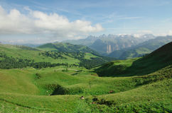 Dolomitic meadows Stock Photography