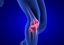 Dolor de la rodilla El cuerpo humano azul 3D de la anatomía rinde en fondo azul ilustración del vector