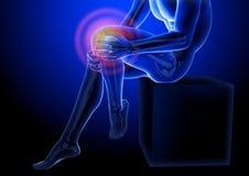 Dolor de la rodilla Radiografía del esqueleto y de las piernas Cuerpo anatómico de un hombre asentado ejemplo médico 3D ilustración del vector