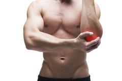 Dolor en el codo Carrocería masculina muscular Aislado en el fondo blanco imagen de archivo libre de regalías