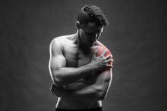 Dolor en el hombro Carrocería masculina muscular Culturista hermoso que presenta en fondo gris imagen de archivo