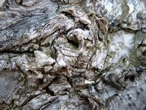 Dolor en madera Imagenes de archivo