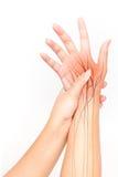 Dolore del nervo della mano fotografia stock