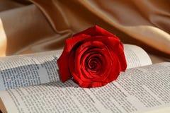 Dolore ed amore Fotografia Stock Libera da Diritti