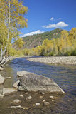 Dolores River in Autumn. A splendid scenic of the dolores river in southwest colorado in fall Stock Photography
