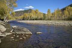Dolores River in Fall. A splendid scenic of the dolores river in southwest colorado in fall Stock Photo