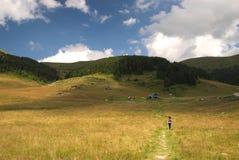 Dolovi di Lalevica sulla montagna di Bjelasica, Montenegro Immagini Stock