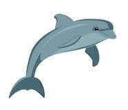 Dolphin. Vector illustration of the dolphin Stock Photos