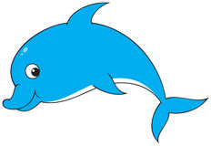 Free Dolphin Stock Images - 10744104