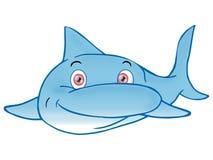 Dolphin Stock Photos