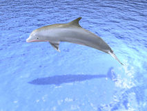Dolphin. Computer image, Dolphin 3D, blue sea Stock Images