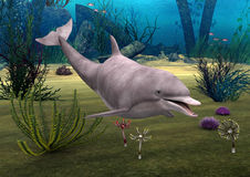 Dolphin. 3D digital render of a cute dolphin on blue fantasy ocean background Stock Photography