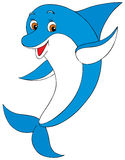 Dolphin. Vector clip-art / isolated illustration for your design Stock Photo