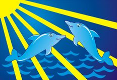 Dolphin. S jump sea animal background beams Stock Images