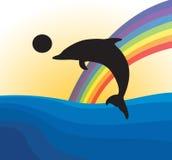Dolphin Stock Photography