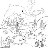 Dolphin book coloring. Outline underwater world Stock Images
