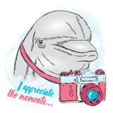 Dolphin with a camera. Vector illustration Stock Images