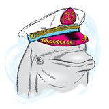 Dolphin in the captain`s cap. Vector illustration Royalty Free Stock Image