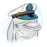 Dolphin in the captain`s cap. Vector illustration Stock Photos