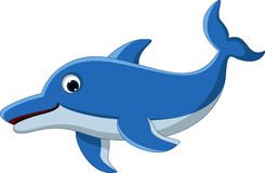 Dolphin cartoon for you design Royalty Free Stock Image
