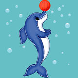 Dolphin Character with Basketball Stock Photos