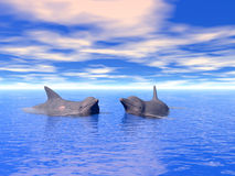 Dolphin_Couple Imagem de Stock Royalty Free