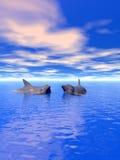 Dolphin_Couple_V ilustração do vetor