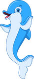Dolphin. Cute dolphin greeting on white background Royalty Free Stock Photos