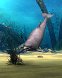 Dolphin. 3D digital render of a cute dolphin on blue fantasy ocean background Stock Photo