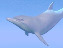 Dolphin - 3D render Stock Photos