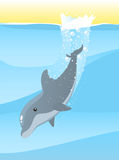 Dolphin dive. Dolphin jumping into the deep sea water  illustration Royalty Free Stock Photos