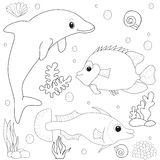 Dolphin fish underwater world. Book coloring isolated outline Royalty Free Stock Images