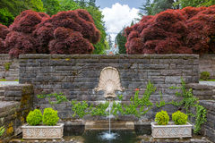 Dolphin Head Water Fountain in Renaissance Garden. Dolphin head on rock stone wall water fountain with large red maple trees and plants in Renaissance Garden royalty free stock photo